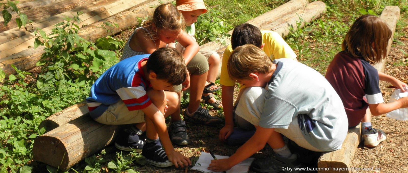 Erlebnisurlaub am Bauernhof Kinderurlaub Bayerischer Wald