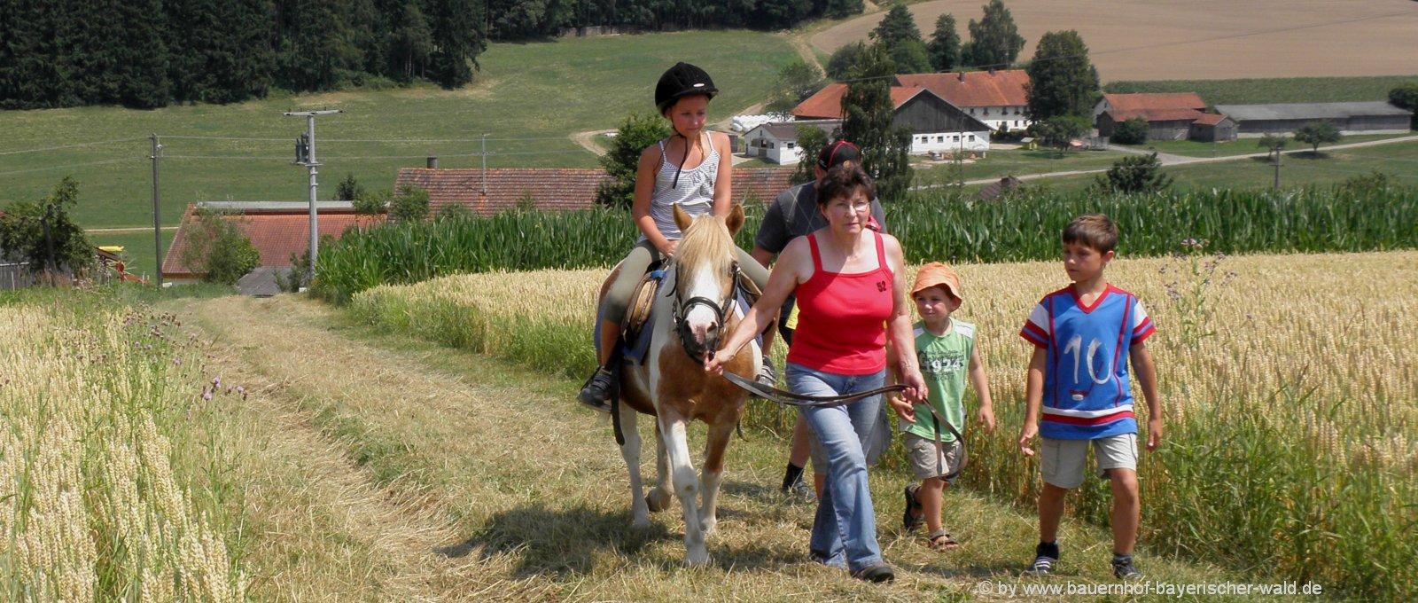 Bayerischer Wald Reiterferien in Bayern Ponyreiten am Bauernhof