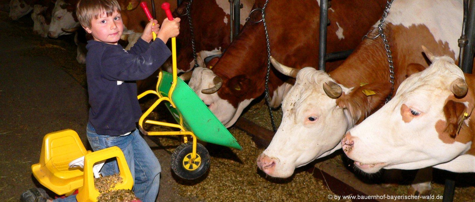 Tiere erleben am Wochenendurlaub am Bauernhof in Bayern