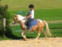Urlaub auf dem Bauernhof - Reiturlaub Bayern