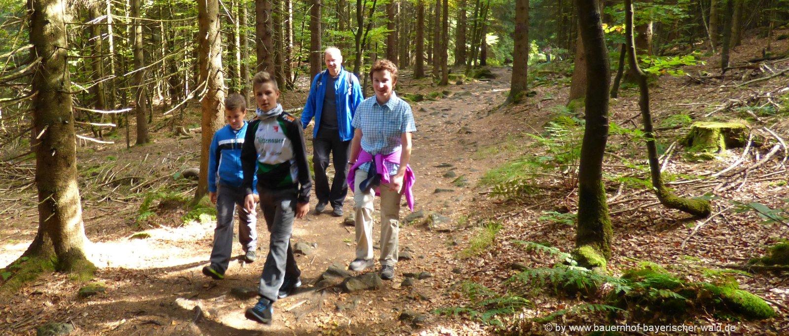 bauernhof-wanderurlaub-bayerischer-wald-wanderwege-ausflugsziele-panorama