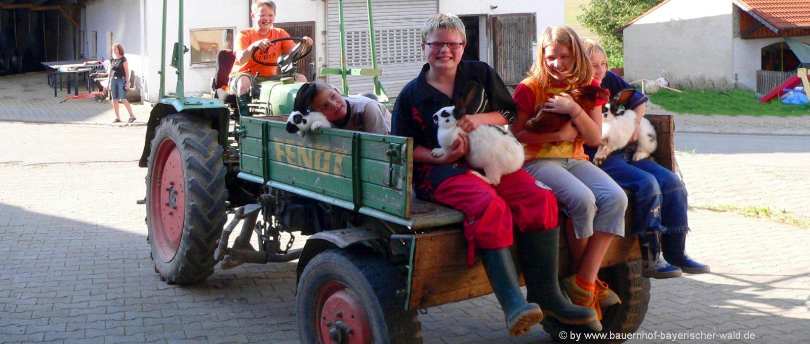 Video vom Bauernhofurlaub Film Familienurlaub und Kinderurlaub Bayerischer Wald
