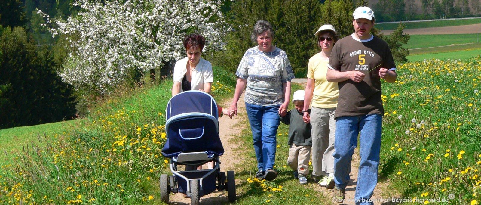 bauernhofurlaub-familienurlaub-wanderurlaub
