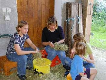 Mit Heu basteln - Erlebnisse auf dem Bauernhof