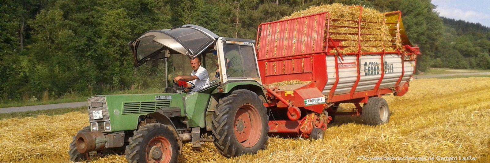 Erlebnisurlaub für Kinder am Bauernhof