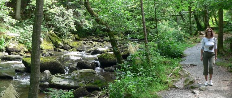 Geocaching Bayerischer Wald Wandern Saussbachklamm