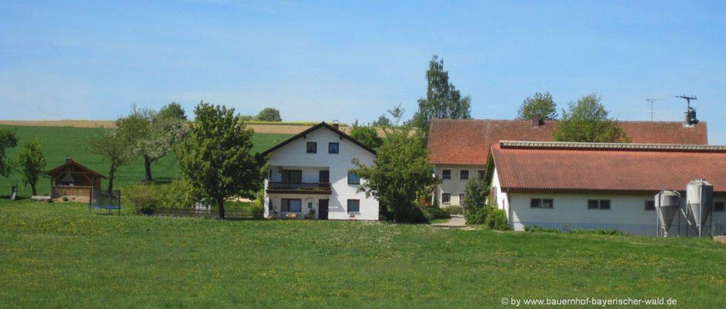 Bayerischer Wald Ferienhaus für Familienurlaub