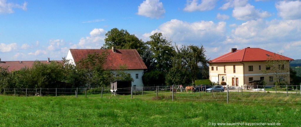 Urlaub am Baby- und Kinderbauernhof nähe Regensburg