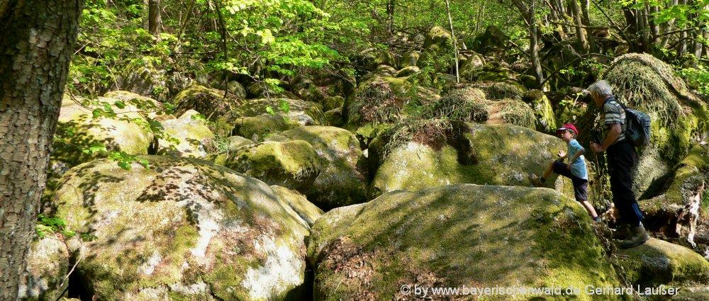 höllbachtal-wandergebiet-vorderer-bayerischer-wald-wanderwege