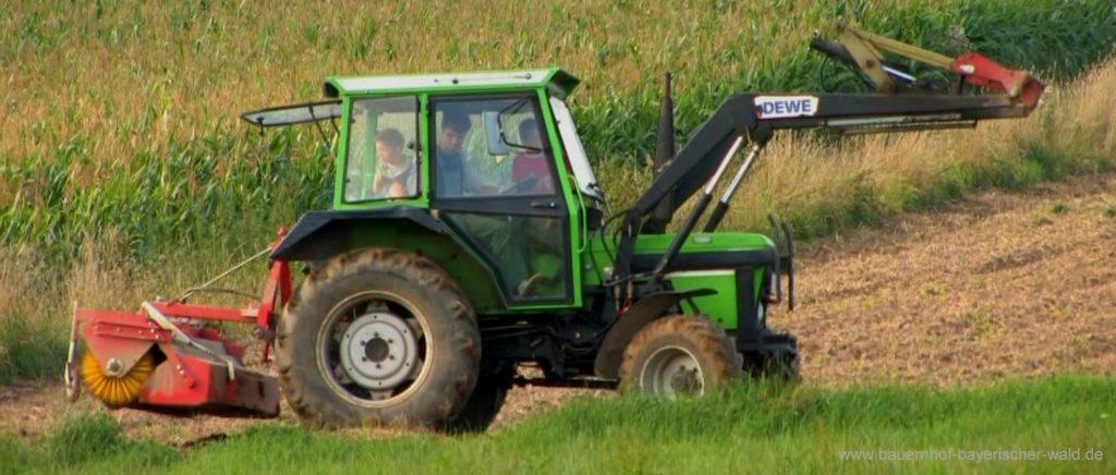 Bilder Bauernhof Urlaub Bayern Bayerischer Wald Bildergalerie