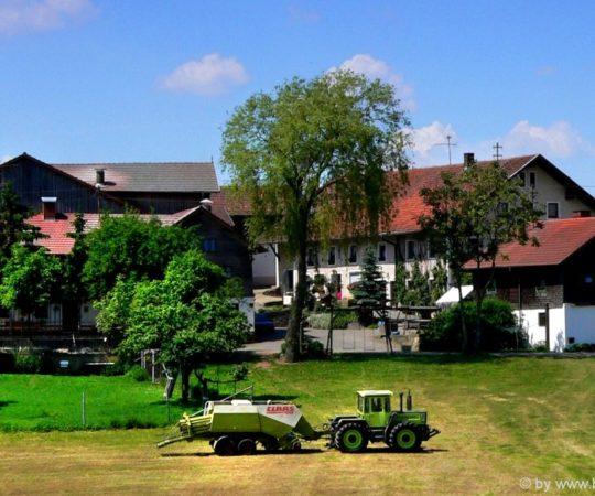 Bayerischer Wald Ferienhaus am Bauernhof für Gruppen