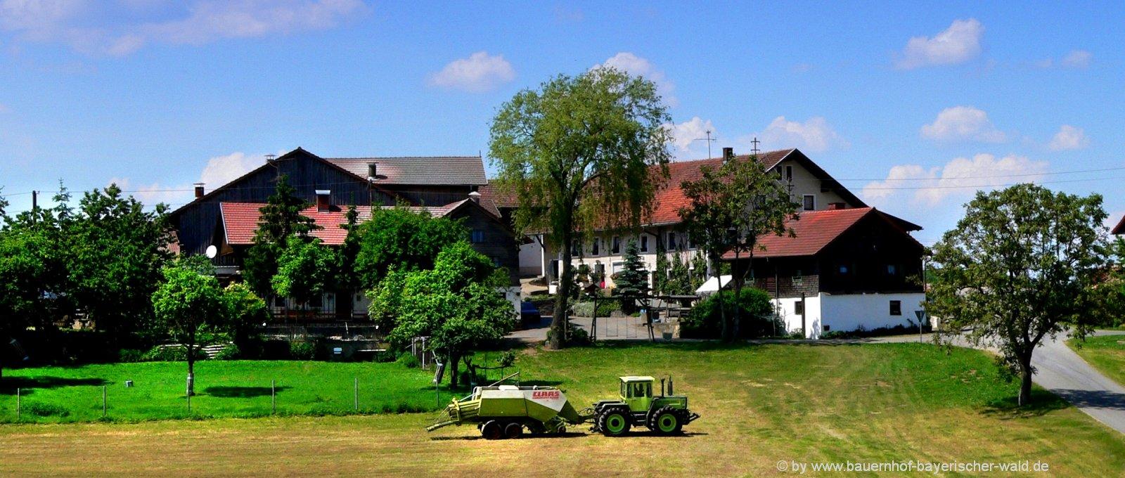 Bayern uriges Ferienhaus am Bauernhof für Gruppen
