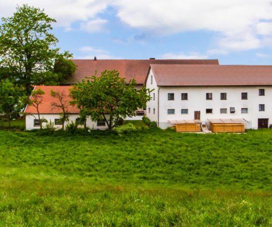 Bauernhof Ferien für Kinder am Guthof