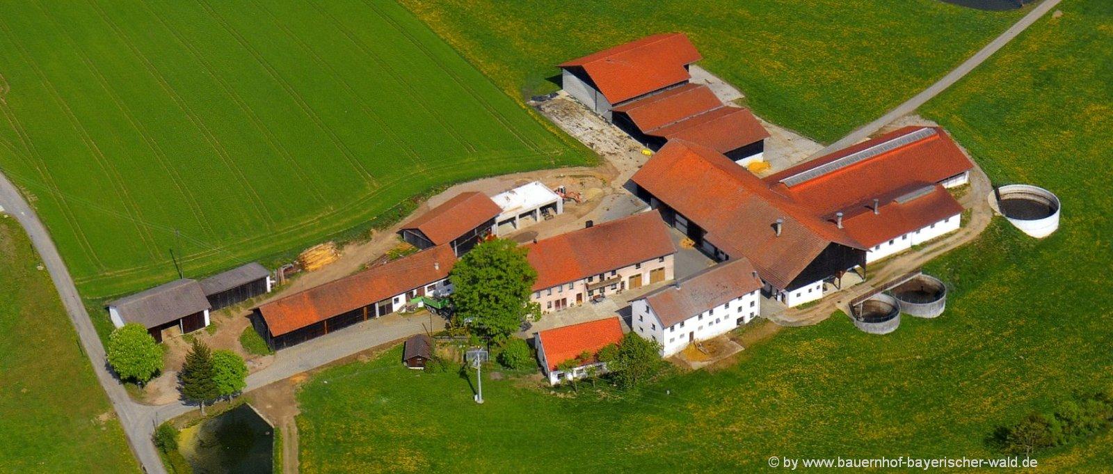 Ferien auf dem Bauernhof mit Hund im Bayerischen Wald