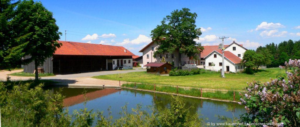 Ferienwohnung auf dem Bauernhof im Bayerischen Wald