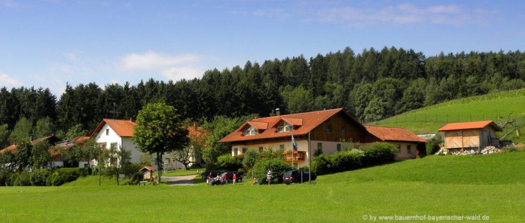 Bauernhof Steinmühle der Erlebnishof in Bayern