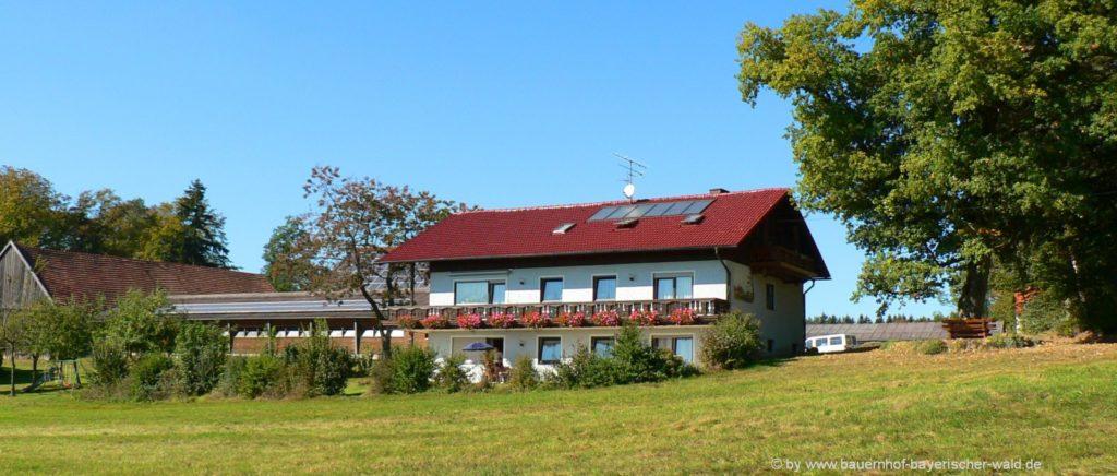Erlebnis und Wanderurlaub am Bauernhof Wagner